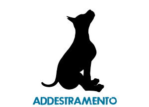 addestramento cani Ravenna