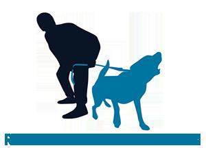 recuperi comportamentali cani Ravenna