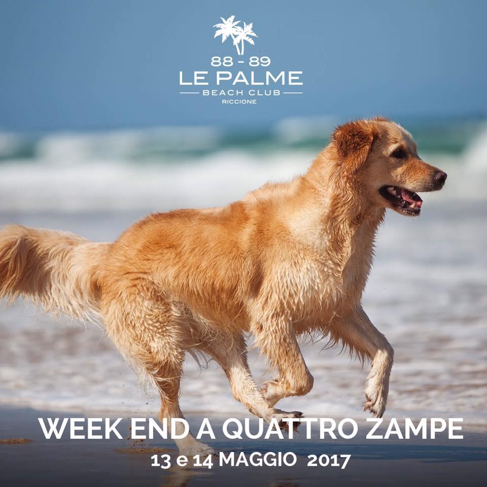 Bagno Le Palme 88 89 Beach Club Riccione