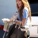 Max Vismara Dog Training Blog - Parlare Canino